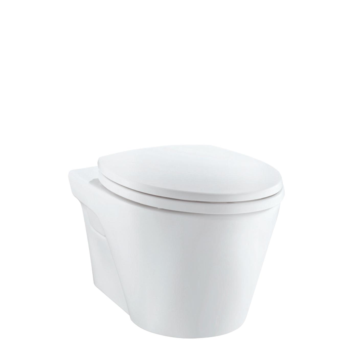 隐蔽水箱式马桶/壁挂
